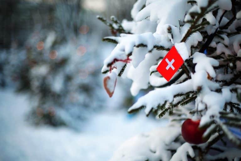 Schweizer Flagge im Schnee